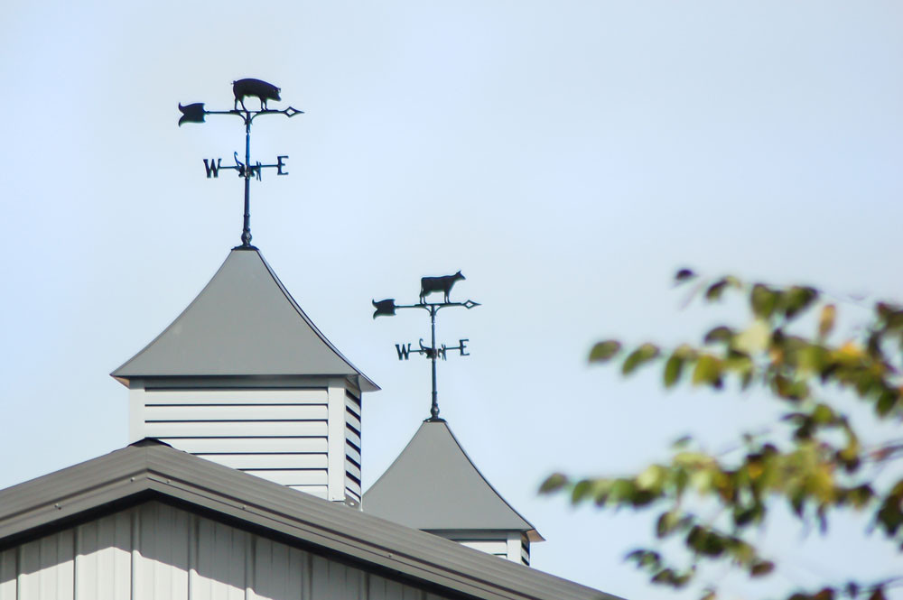 Pig weathervane and cow weathervane on cupolas