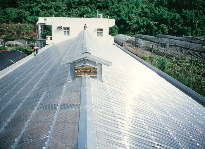 Greenehouse with Polycarbonate Skylight