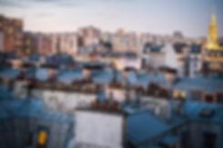 paris rooftop.jpg