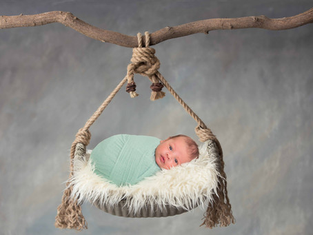 Newborn Session,