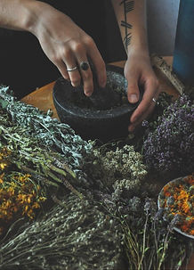 Tincture Making for the Winter Months.jp