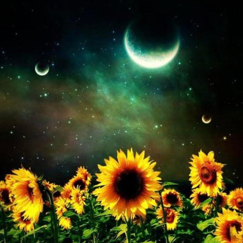 Summer Solstice and New Moon Circle