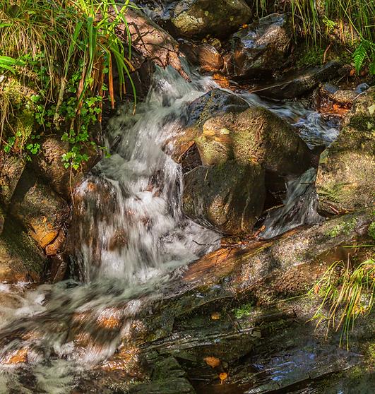 Highland Burn running with clear, fresh water, Glasdrum, Lorn