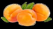 abricot det.png