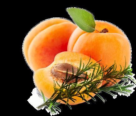 Abricot Romarin