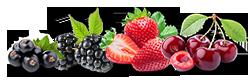 fruit-rouges.png