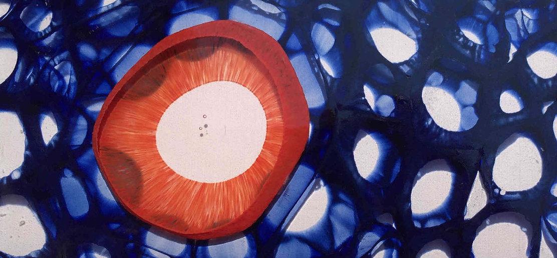 Orange%20eye%20detail%202%20cleaned_edit