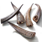 Small-Goat-Horn-Dog-Treats-1-600x600 (1)