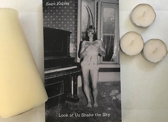 """Look At Us Shake The Sky"" by Saint Knives"