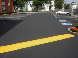 SPEED BUMPS/HUMPS