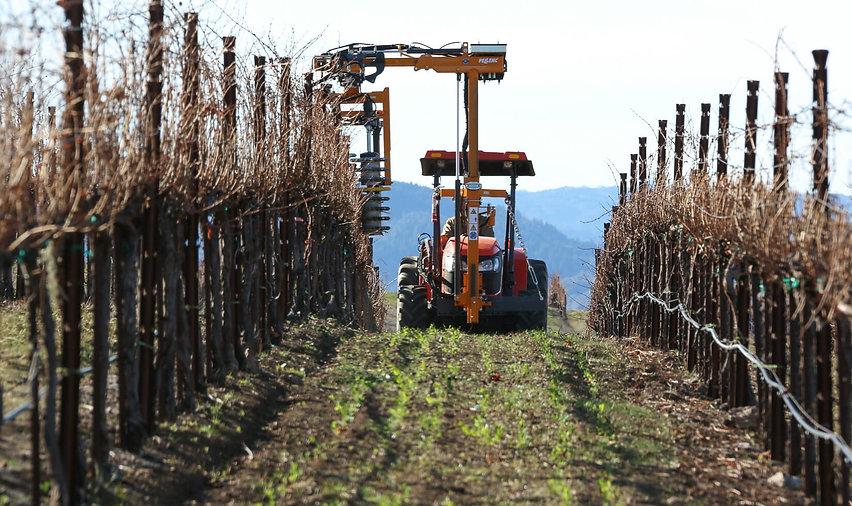 Grapevine Tractor - 2.jpg