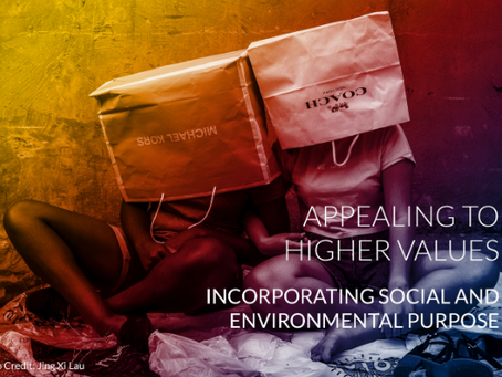APPEALING TO HIGHER VALUES - Incorporating social and environmental purpose