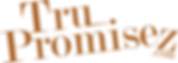 NEW promisez.com logo.png