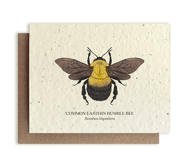 Bumble Bee Plantable card