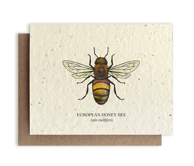 European Honey Bee Plantable card