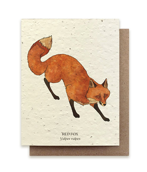 Red Fox Plantable card