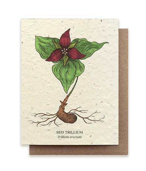 Red Trillium Plantable card