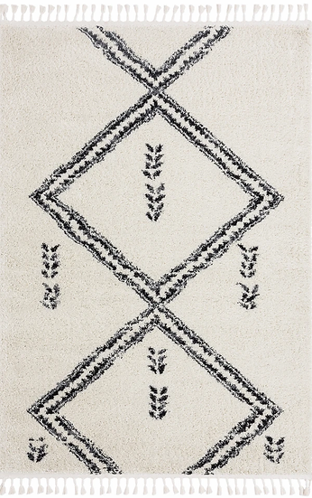 Willow Moroccan shag rug