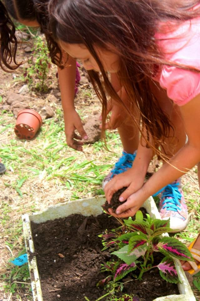 Child Focus Garden Project