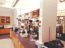 Abolhasani Lab