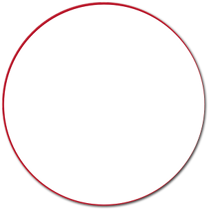 Background Circle.png