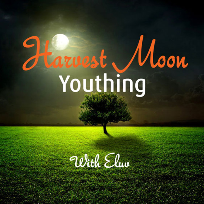 Harvest Moon Youthing with Eluv