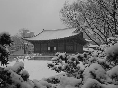 Scenes of a Winter Walk Towards Deoksugung Palace