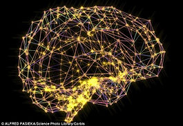 Brain activity.jpg