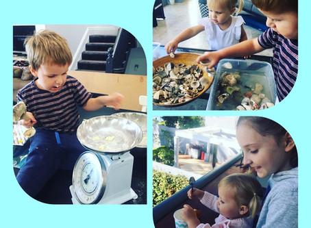 Homeschooling - 5 Tips For Parents