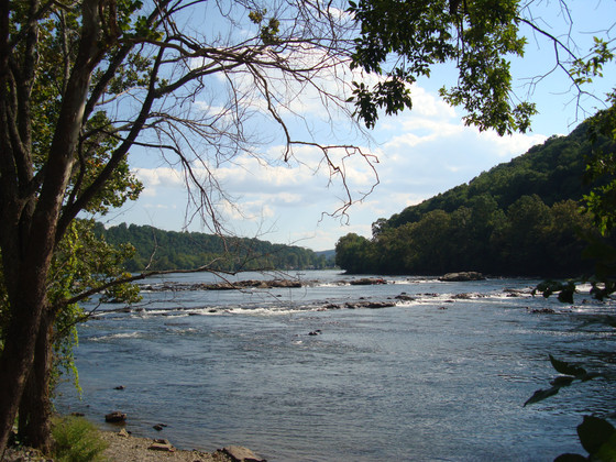 """New River Valley """"Best of"""" List"""