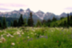 Canva - Tatoosh Mountains.jpg