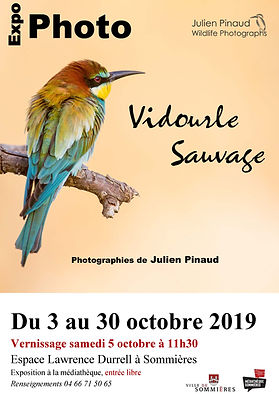 Affiche expo Julien Pinaud.jpg