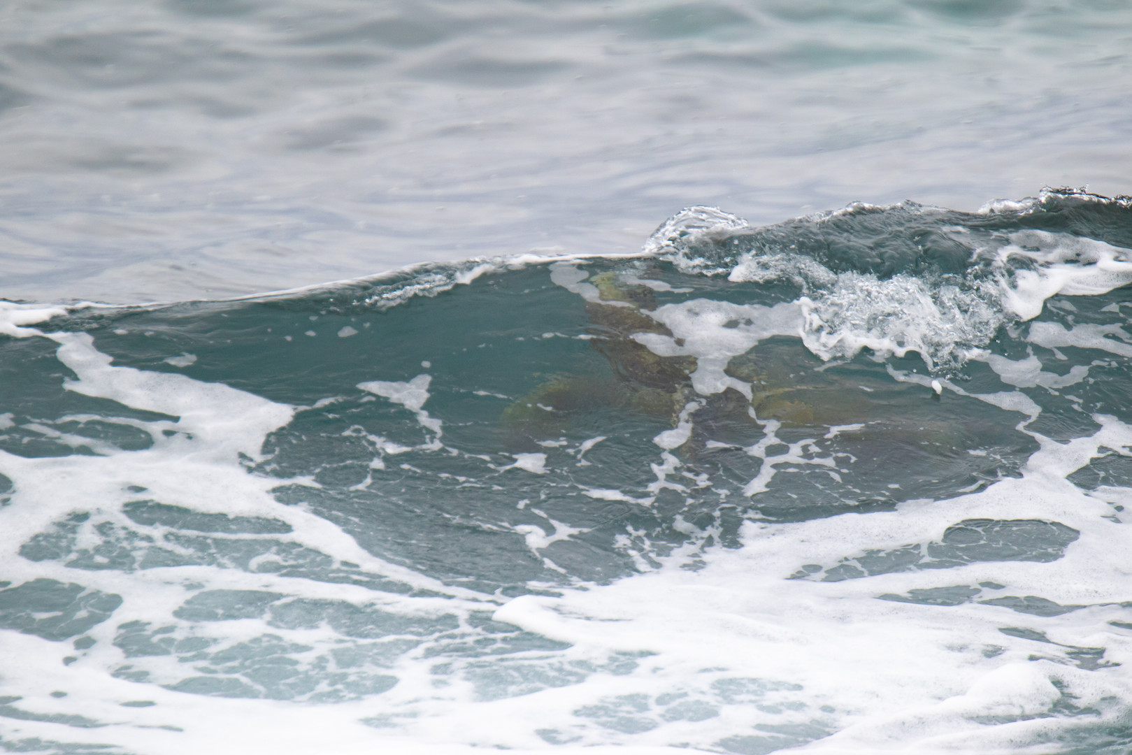 En haut de la vague / At the top of the wave