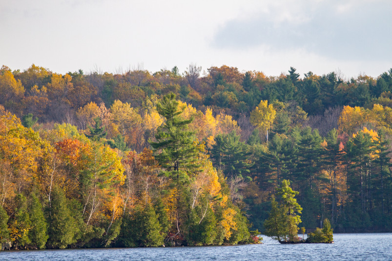 Couleurs d'automne depuis le lac Ontario / Fall colors from Ontario lake