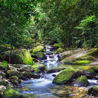Cachoeira_IMG_4886.jpg