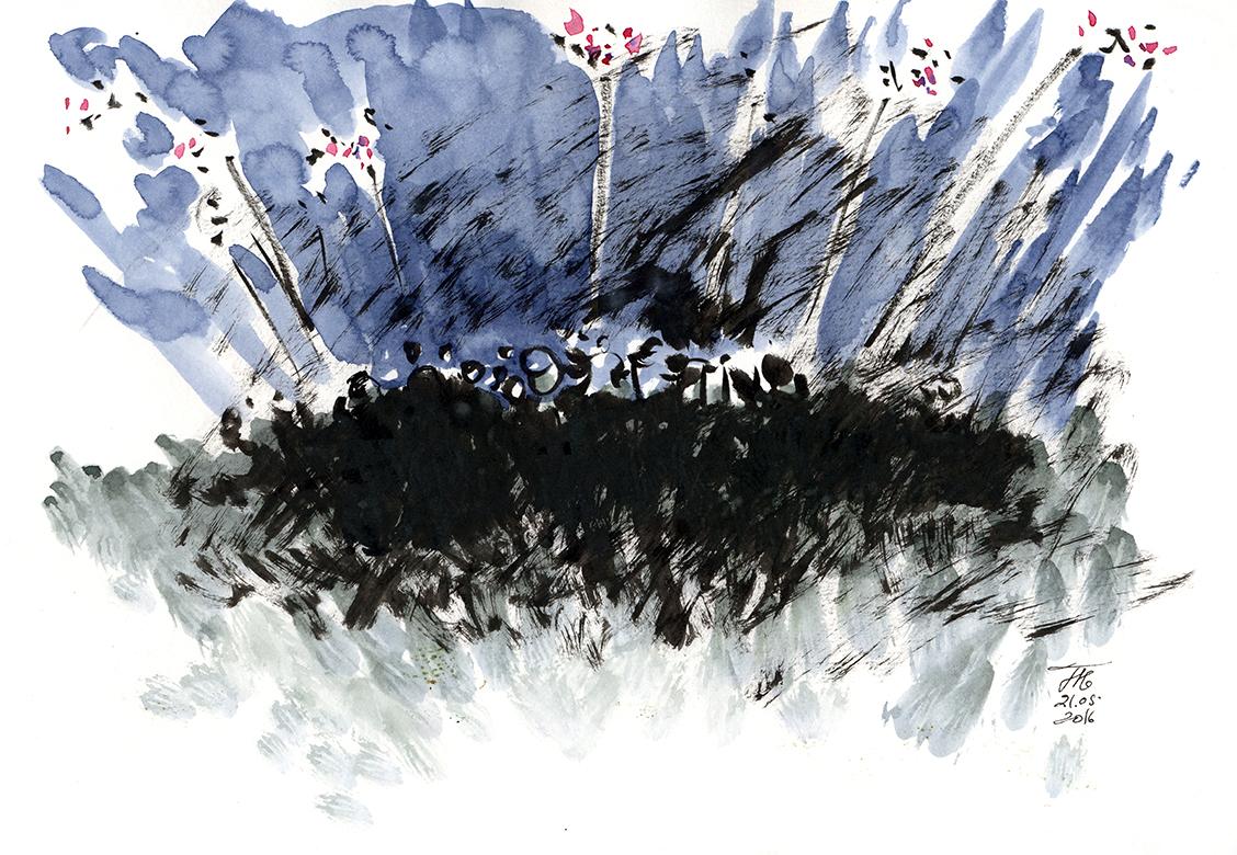 Fireworks, 2016