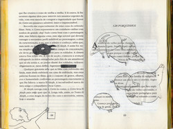 The book as Art III