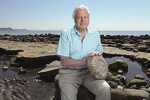 LoLo Res David Attenborough.jpg