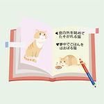 アイコン_B4_紙の本:写真集・イラスト集などの場合_B4_05_編集プラン