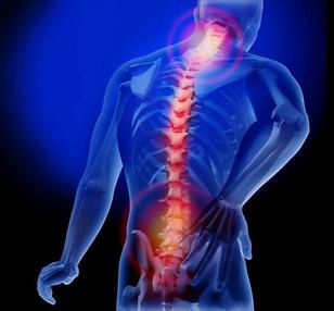 back-spine-injury-4-ptm-1280x500_edited_