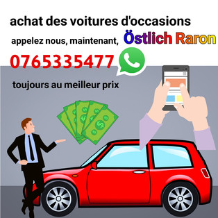 achat_de_voiture_occasion_Östlich_Raron