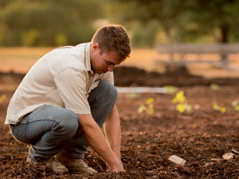 How Much Greener Can a Green Farmer Get