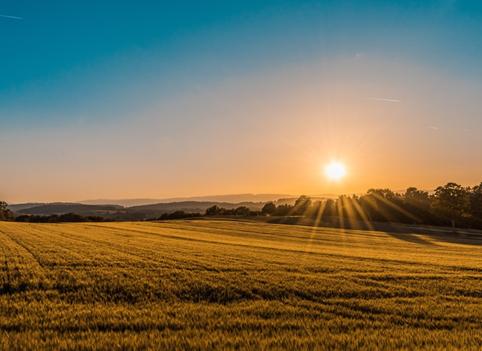 Solar Farmland Regulations