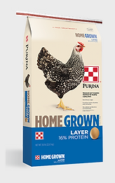 Purina Home Grown Layer Pellet/Crumble