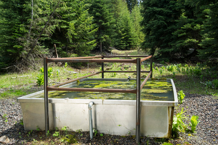 Water-Troughs-on-National-Forest.jpg