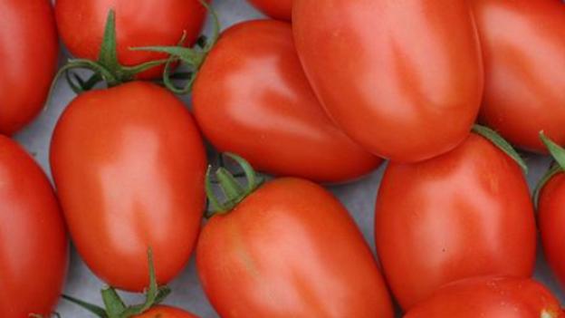 Seeds: Roma Tomato