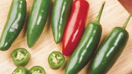 Seeds: Serrano, Pepper