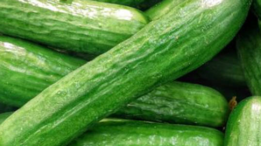 Seeds: Raider, Cucumber