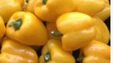Seeds: Mini Bell Yellow Pepper
