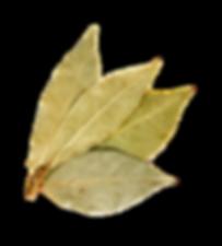 squadplan, socialmedia, socialmediaagency,zurich, switzerland, instagram, facebook, linkedin, saveta, savetatomovic, saveta dubak, socialmedia agentur, logo, branding, insta, website, webdesign, marketing, onlinemarketing, digitalcontent, grafik, graphics, design, squad-plan, all things digital, digitalproject, content, contentmanagement, photography, influencerg